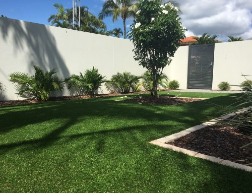 Artificial Grass – All your DIY information