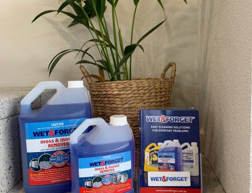 Wet & Forget – Now Available at Island Block & Paving